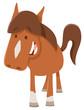 cute horsepr pony farm animal - 153939617