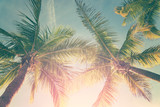 Tropical landscape with palm trees and sunny sky  - 153993265