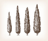 Vintage cypress set - 154025036