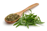 Dried and fresh thyme with wooden spoon - 154241269