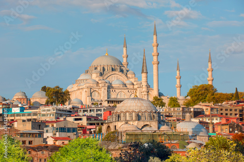 Cityscape of Istanbul with the Golden Horn and Suleymaniye Mosque Poster