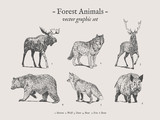 Forest animals drawings set on grey background with moose, wolf, deer, bear, fox, boar - 154442816