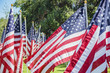 Sea of America Flags
