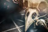 Pendulum and Ravenskull, Closeup with Copyspace - 154516451
