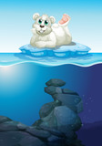 Scene with polar bear and underwater