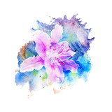 Flower watercolor illustration. - 154554498