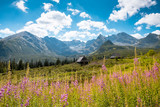 Hala Gasienicowa, Tatra mountains Zakopane Poland - 154571048