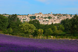 Village and lavender in Provence