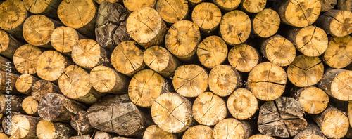 Foto op Canvas Brandhout textuur Toras de madeira.