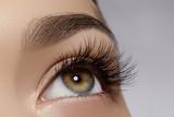 Beautiful female eye with extreme long eyelashes, black liner makeup. Perfect make-up, long lashes. Closeup fashion eyes - 154800848