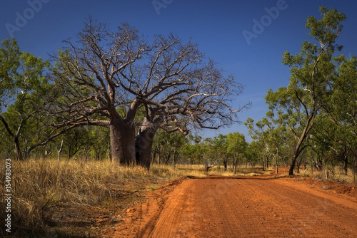 Fotobehang Baobab Outback Track at the Kimberleys - Western Australia