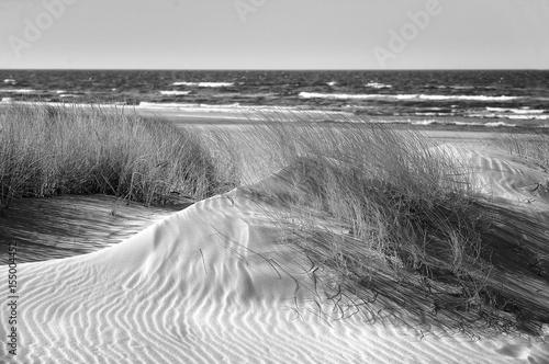 Fototapeta Poland, Leba, Baltic Sea - Beautiful sandy beach