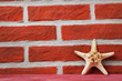 Starfish on red brick wall background