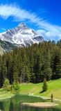 Alpine view (Vorarlberg,Austria) - 155380614