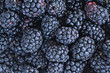 Full frame background of juicy raw blackberry fruit.