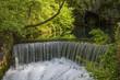 Beautiful small waterfall surrounded by greenery - 155527494
