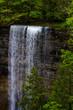 The Falls - 155568002