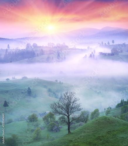 Fotobehang Purper Lazeyschina Lazeshchyna village in the mist