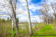 Spring Time at the Lake