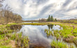 Storm Forming Over the Marsh in Spring