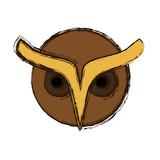 owl icon over white background. vector illustration