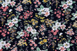 fabric pattern with flowers  background - 155695042