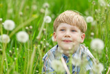 Little blond boy sitting in a meadow of dandelions