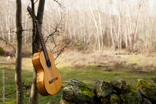 Plakát Classical guitar hanging of a tree