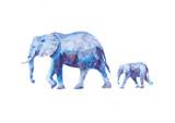 Watercolor elefants