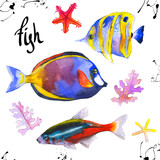 Set of tropical marine fish. Watercolor illustration with hand drawn aquarium exotic fish on white background.