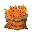 Ilustrace bag of carrots, cartoon - 156220449