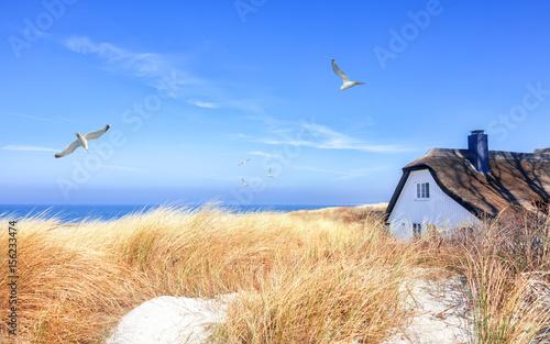 Leinwandbild Motiv Haus in den Dünen bei Ahrenshoop auf dem Darß