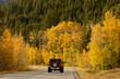 Driving Through Fall