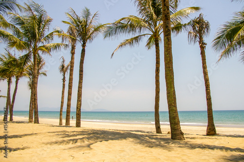 Tropical beach with palm tree's and golden sand in beautiful tropical Vietnam