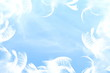 Quadro peaceful freedom or dream related concept background