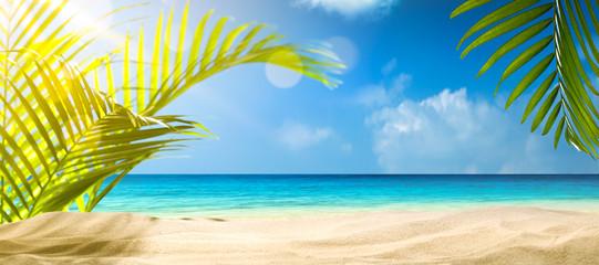 Palm and tropic beach