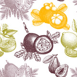 hand drawn Tropical fruits background