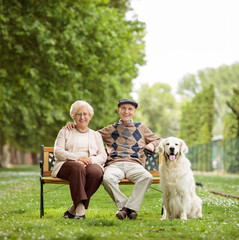 Happy elderly couple with dog on bench in the park