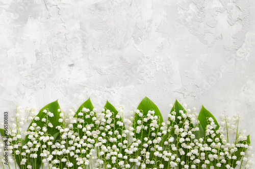 Fotobehang Lelietjes van dalen Lilies of the valley on a concrete texture, lying in a row