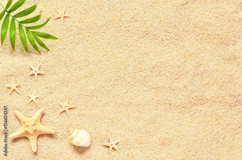 Fototapeta Sea sand with starfish and shells. Top view with copy space