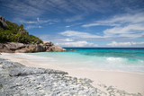 island beach in indian ocean on seychelles - 156668606