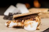 Ooey Gooey Marshmallow Smore - 156751640