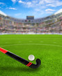 Field Hockey Arena With Stick and Ball on Field