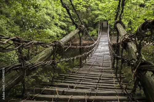 かずら橋 四国村