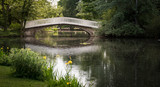 Pont du lac des Ibis