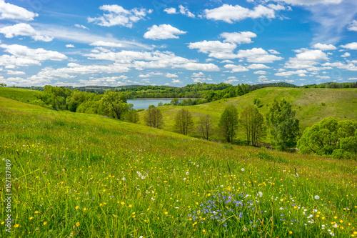 Spring landscape - 157137809