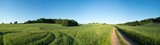 Panorama summer green field landscape with dirt road - 157138271