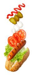 fly hot-dog isolated on white © alter_photo