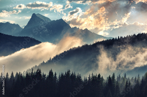 Foggy morning landscape with mountain range and fir forest in hipster vintage retro style - 157148696