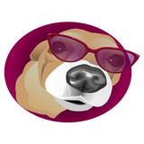 Dog in glasses. Vector illustration.